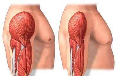 Gasto calórico após o treino de musculação