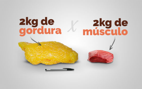 gordura vs musculo