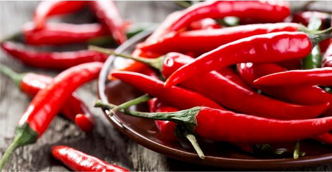 pimenta vermelha capsaicina