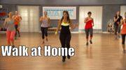 Como Emagrecer Caminhando em Casa e Queimar Gordura
