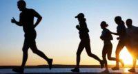 O que é o Metabolismo Basal e Como Acelerar o TMB