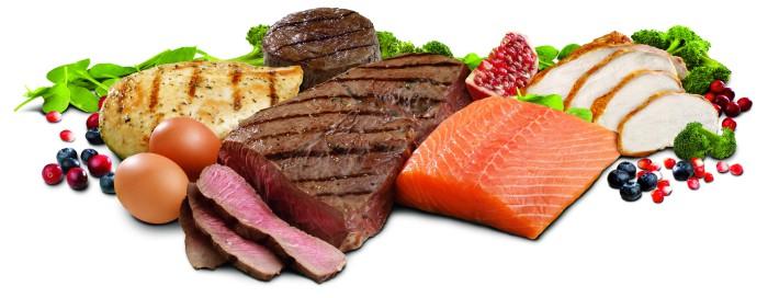 Proteínas e os Músculos