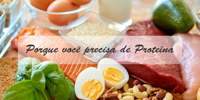 porque você precisa de proteína